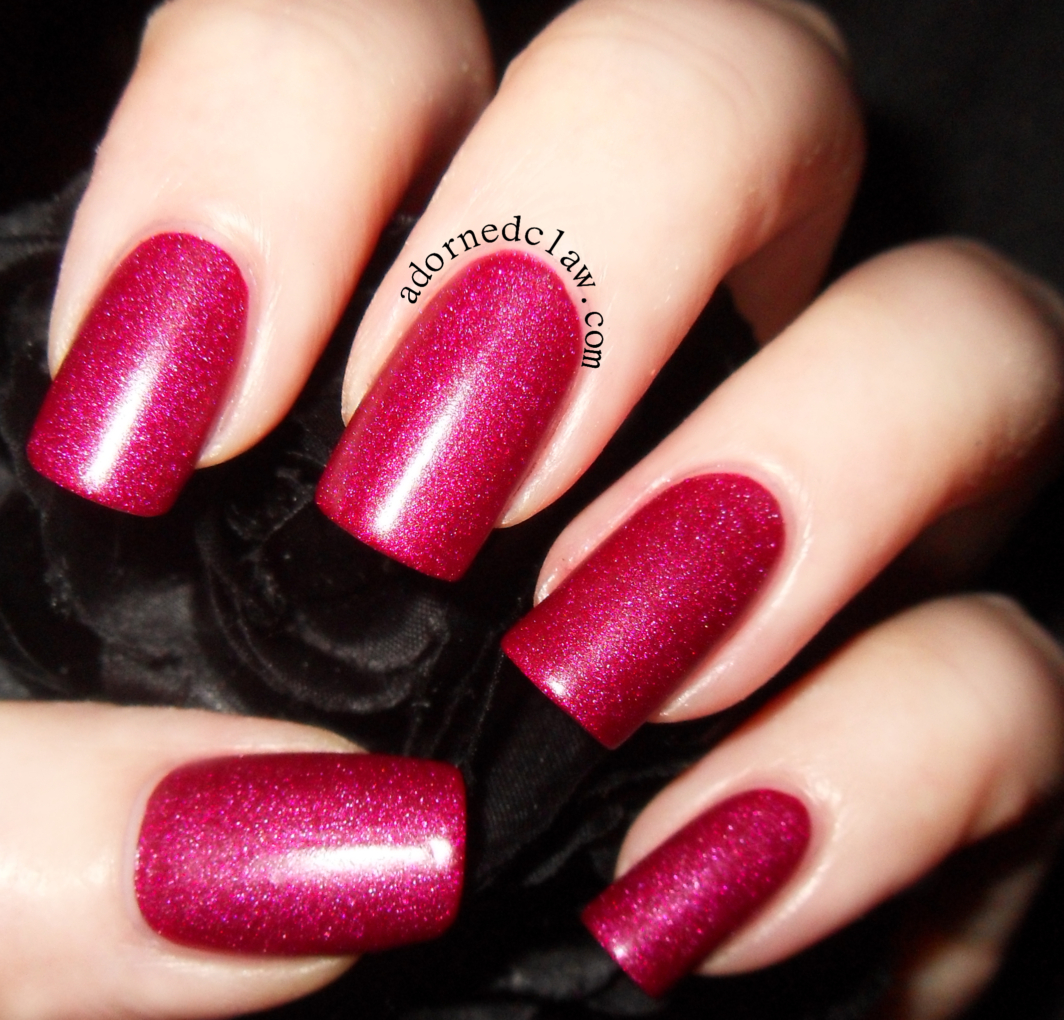 Matte | The Adorned Claw