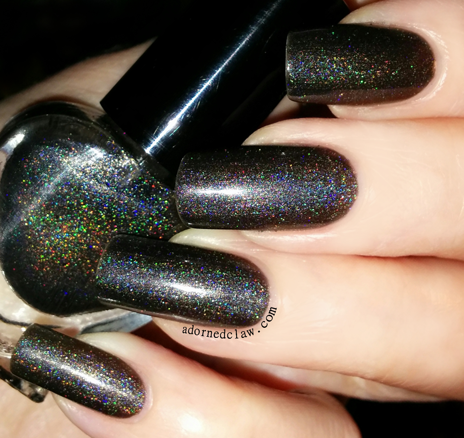 Hologram Silvers: The Adorned Claw