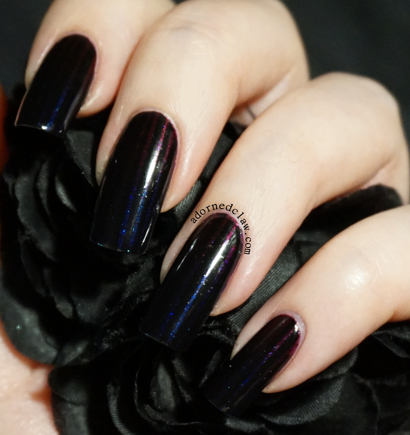 purple | The Adorned Claw