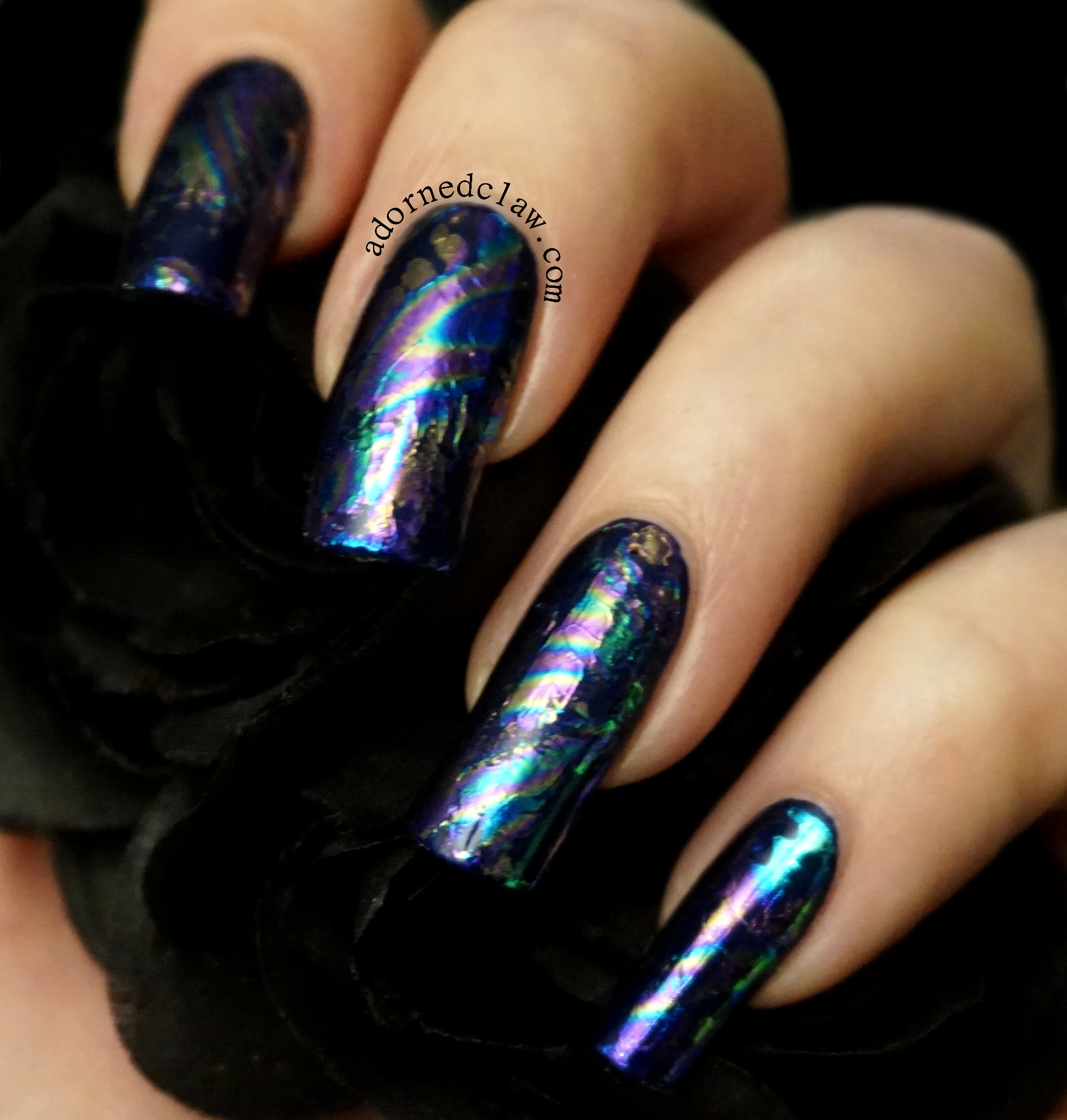 iridescent | The Adorned Claw
